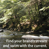 Champlain Marketing - Find your brand's stream
